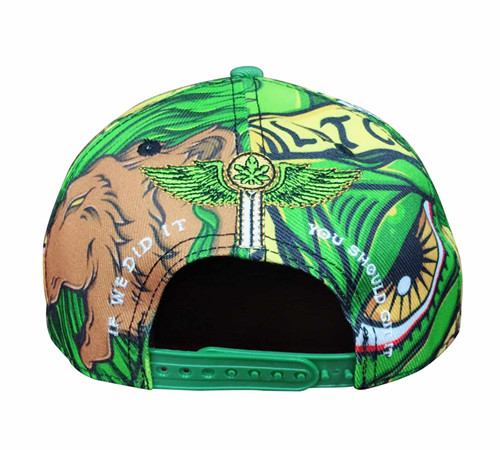 Polyester sublimation Snapback-BK8011F